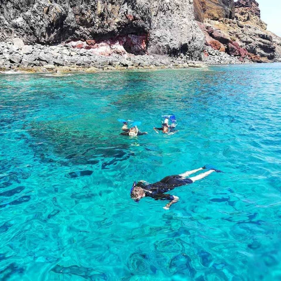 Diving madeira Snorkeling whales dolphins Kayak - 39775300_1018051838375441_2406410020636852224_n-1