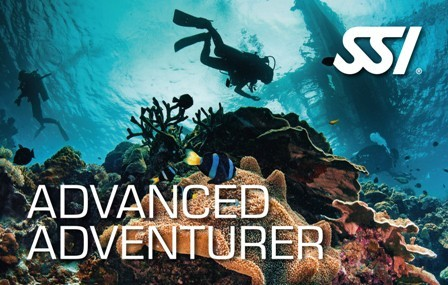 Diving madeira Snorkeling whales dolphins Kayak - Advanced-Adventurer_ssi_padi