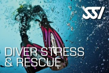 Diving madeira Snorkeling whales dolphins Kayak - course-diver-stress-rescue-ssi-madeira-padi-360x240