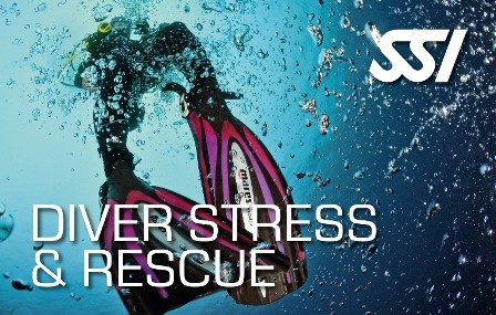 Diving madeira Snorkeling whales dolphins Kayak - course-diver-stress-rescue-ssi-madeira-padi