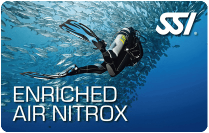 Diving madeira Snorkeling whales dolphins Kayak - enriched-air-nitrox