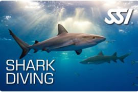 swimming with shark madeira