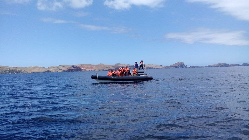 Diving madeira Snorkeling whales dolphins Kayak - 13307399_1018498231565350_6756471243843492194_n