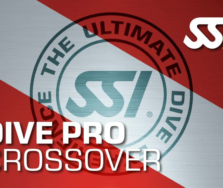 madeira azul diving divepro crossover ssi