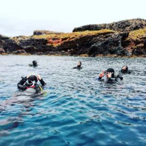 Diving madeira Snorkeling whales dolphins Kayak - 36858953_971837396330219_7769604149225717760_n