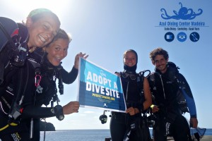 Diving madeira Snorkeling whales dolphins Kayak - Adopt_a_divesite