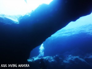 Azul diving madeira exploration dives